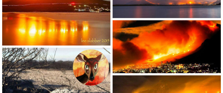 The Burning Hills of Cape Town